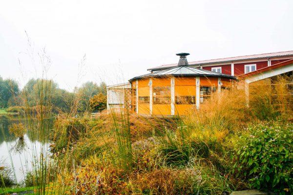 1600-Lepelaar-Hajé-4953