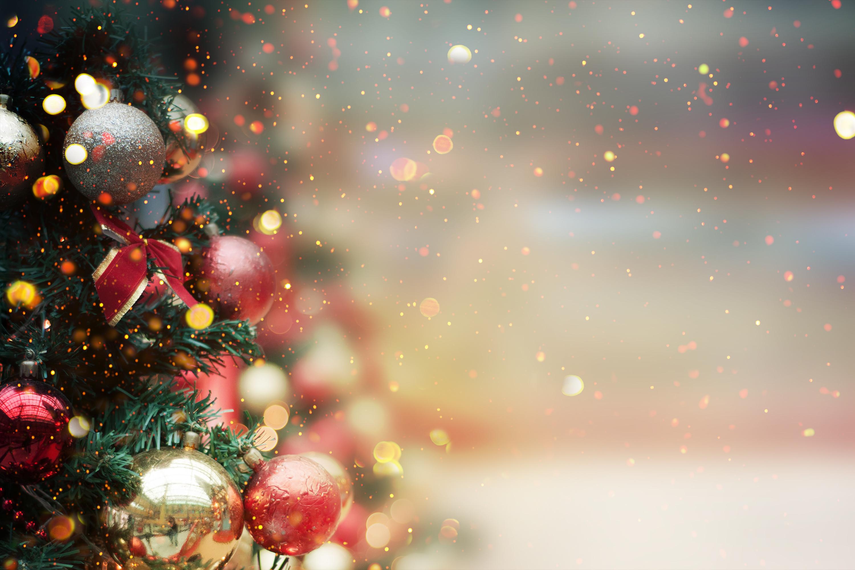 Hajé Kerstbrunch